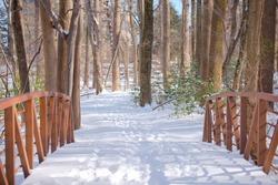Snowy bridge, Winter forest in Virginia, USA