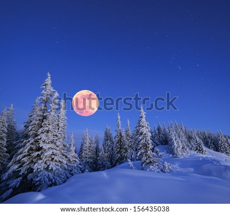 Stock Photo Snowy Christmas landscape. Moonlit night. Winter forest in snow. Full moon and starry sky. Natural background in blue colors