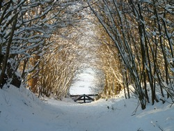 Snowy corridor