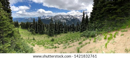Snowy evergreens & mountain tops. Take a look at these beautiful shots of Washington States Mount Rainier. #1421832761
