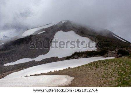 Snowy evergreens & mountain tops. Take a look at these beautiful shots of Washington States Mount Rainier. #1421832764