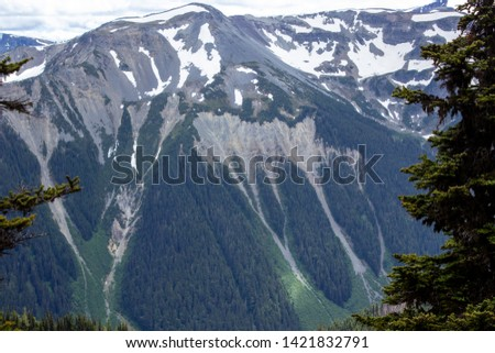 Snowy evergreens & mountain tops. Take a look at these beautiful shots of Washington States Mount Rainier. #1421832791
