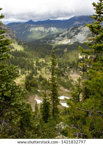 Snowy evergreens & mountain tops. Take a look at these beautiful shots of Washington States Mount Rainier. #1421832797
