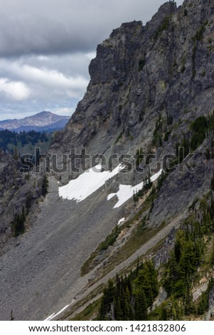 Snowy evergreens & mountain tops. Take a look at these beautiful shots of Washington States Mount Rainier. #1421832806