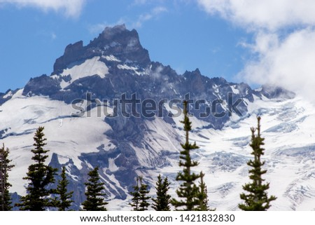 Snowy evergreens & mountain tops. Take a look at these beautiful shots of Washington States Mount Rainier. #1421832830
