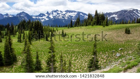 Snowy evergreens & mountain tops. Take a look at these beautiful shots of Washington States Mount Rainier. #1421832848