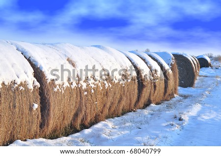 snowy hay bales with clouds