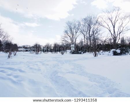 Snowy landscape in Japan winter #1293411358