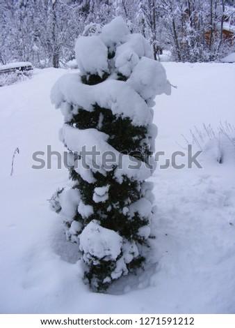 Snowy landscape in the mountain Harghita Stock fotó ©