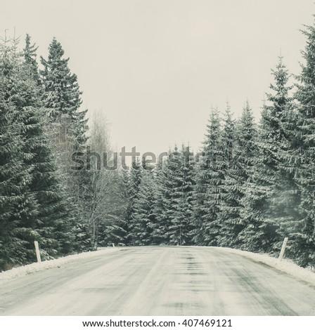 snowy mountain road in fir tree ...