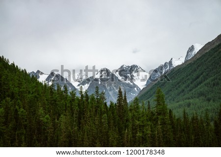 Snowy mountain top between big mountains under overcast sky. Rocky ridge in overcast weather above forest. Giant glaciers. Atmospheric minimalist landscape of majestic nature.