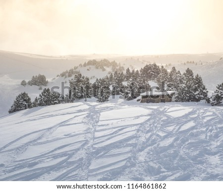 Snowy off-piste slope with small building and spruce trees covered by tracks from snowboarder and skiers  and other mountain slopes at sunrise, cloudy winter weather (Andorra) #1164861862