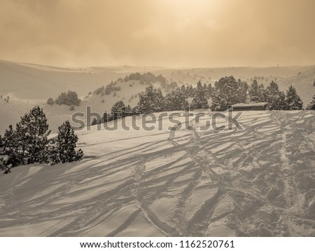 Snowy off-piste slope with tracks from snowboarder and skiers downhill surrounded by spruce trees and other mountain slopes at sunny, cloudy winter weather (Andorra) #1162520761