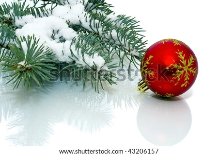 Snowy pine Christmas decorations on a white background.