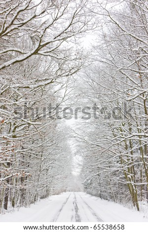 snowy road, Czech Republic