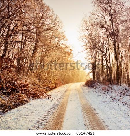 Snowy road in sunlight