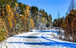 Snowy road through the autumn forest. Winter snow road. Autumn forest road in snow