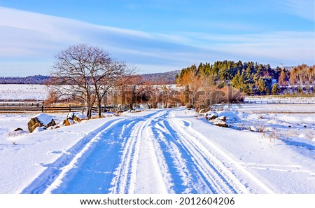 Snowy rural road landscape. Road to winter snow village. Winter snow road to village
