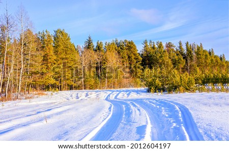 Snowy rural road to the forest. Winter snow road. Snow road in winter forest