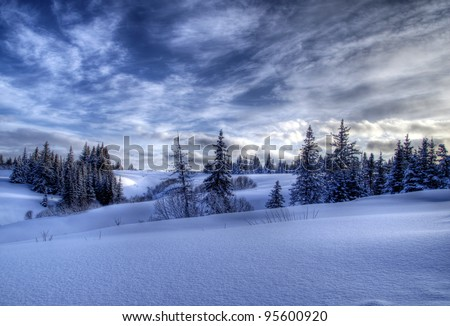 Snowy winter Alaskan landscape with spruce trees and dramatic skies