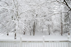 Snowy winter back yard looking out over porch deck railing to snow covered tree branches at edge of woods forest.