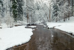 Snowy winter forest and flowing river. Scenic landscape on a winter day in the forest