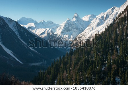 Snowy winter Greater Caucasus mountains at sunny day. Top view of green forest and snow covered mountain peaks illuminated by the sun. Kabardino-Balkaria, Russia. Winter landscape in Arhkyz.