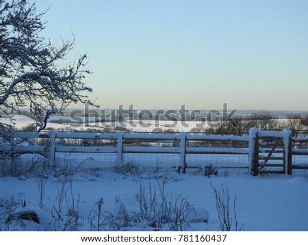 Snowy Wintry Scene #781160437