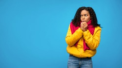 So Cold. Black Woman Freezing Wearing Warm Winter Clothes Posing Standing Over Blue Studio Background. Free Space, Panorama