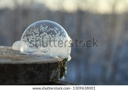 Soap bubbles freeze in the cold. Winter soapy water freezes in air. #1309638001