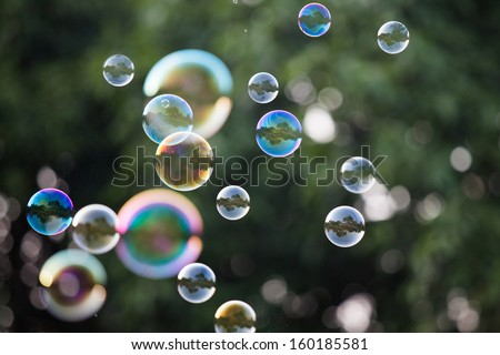 Soap Bubbles in front of the forest  #160185581