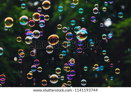soap bubbles on green nature background #1141193744