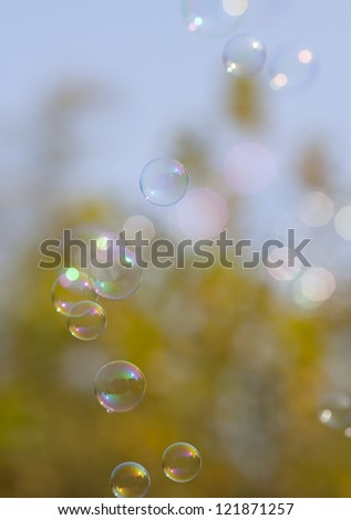 Soap bubbles on yellow natural background  in falls season