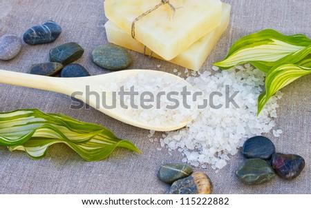 Soap with sea-salt spa