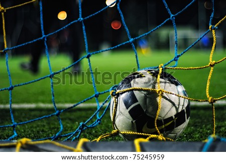 Soccer ball falls into the net, its goal