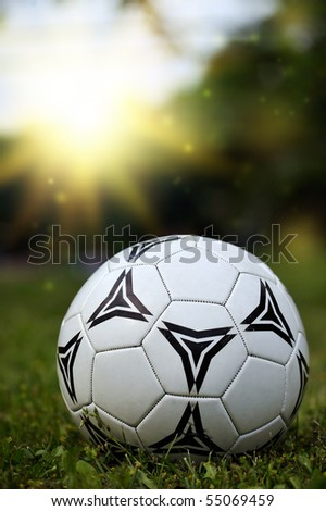 soccer ball (football) laying on a grass