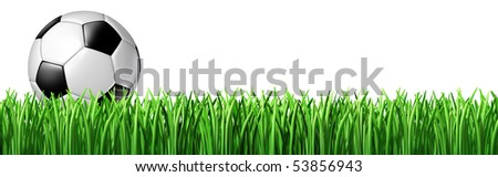 Soccer ball grass isolated on white background