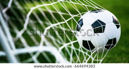 Soccer ball in goal on green grass #664694383