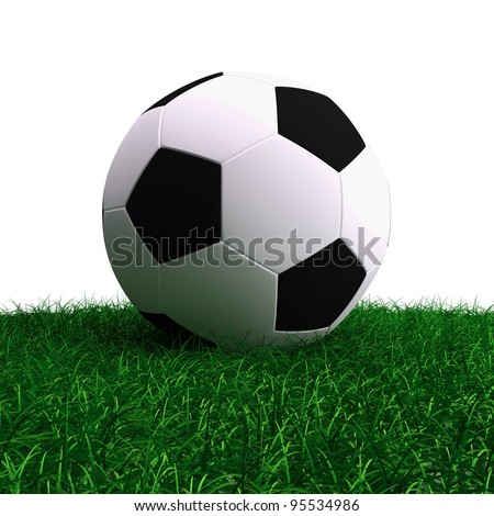 Soccer ball on a grass