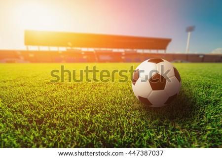 Soccer ball on grass in soccer stadium.