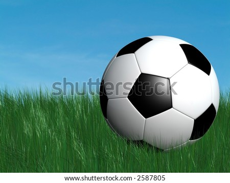 soccer ball on green grass with blue sky on the background,ground level