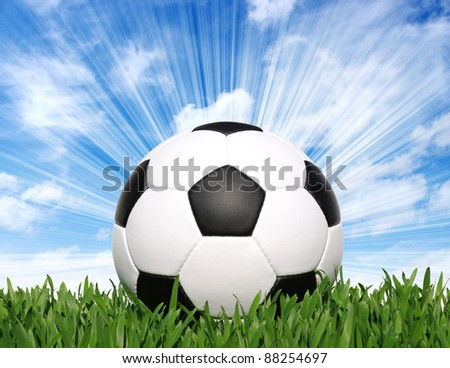soccer ball on the grass