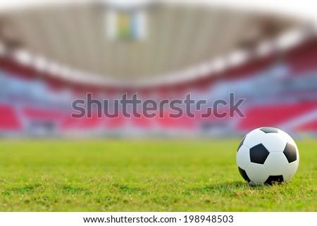 soccer field  #198948503
