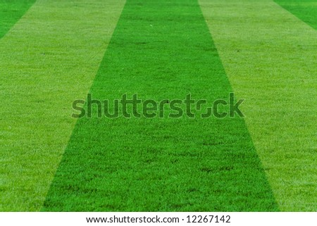 soccer field for background use