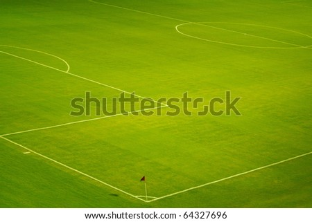 Soccer field with beautiful green grass in stadium .