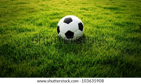 Photo of Soccer football field stadium grass line ball background texture light shadow on the grass