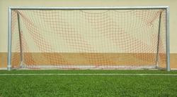 Soccer goal on green grass