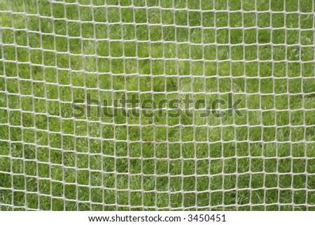 Soccer Net Against Spring Grass Stock Photo 3450451 : Shutterstock
