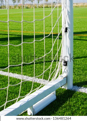 Soccer net with limit lines of a sports grass field