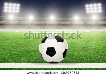 Soccer on football stadium field with blurred crowd background and copy space. #1369382813